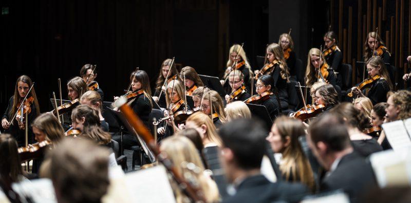 Philharmonic Orchestra 5