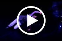 https://www.youtube.com/embed/BMKLIeu-feE?enablejsapi=1&origin=https://pam.byu.edu/group/contemporary-dance-theatre/